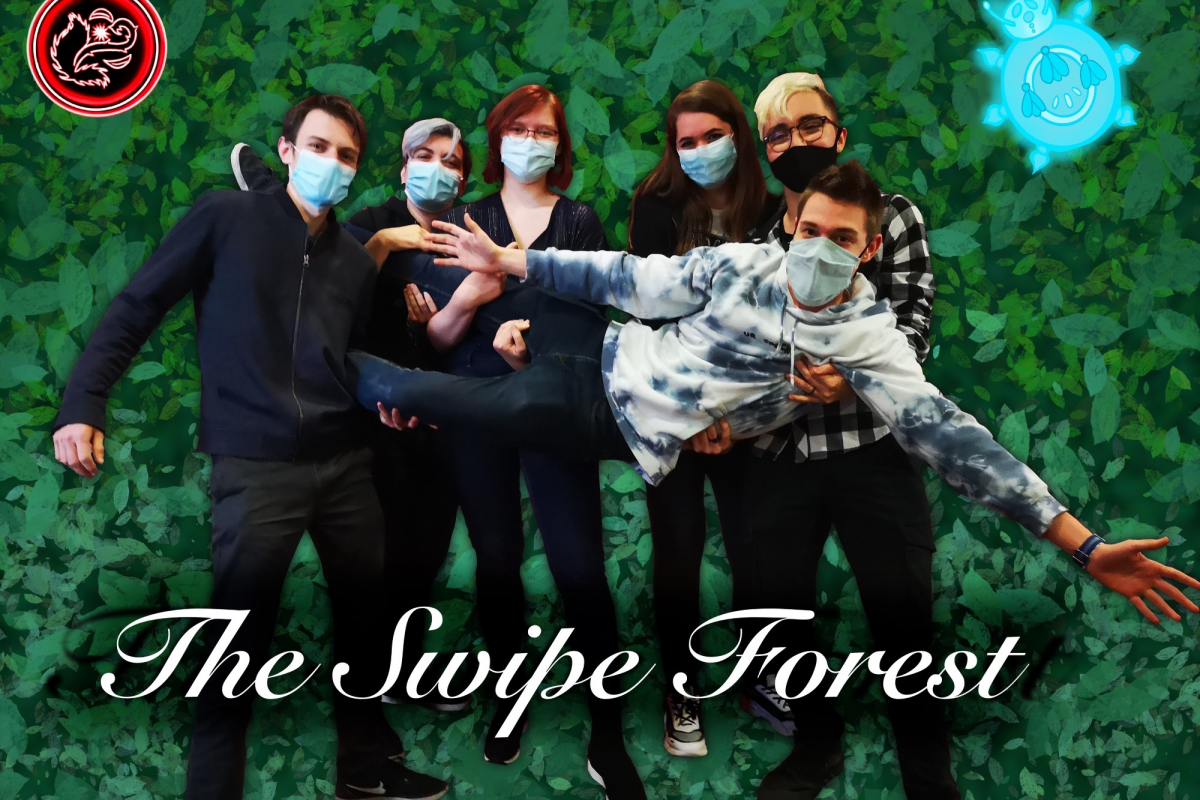 the-swipe-forest.png